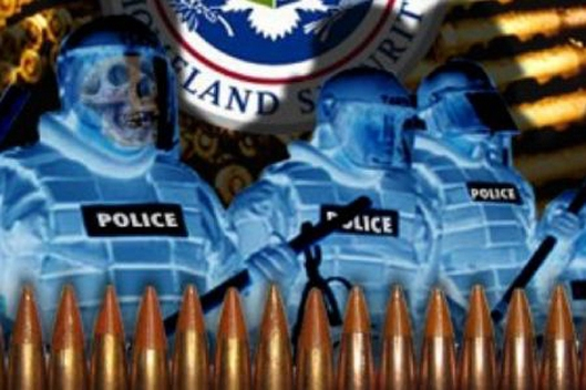 DHS Ammo Purchases