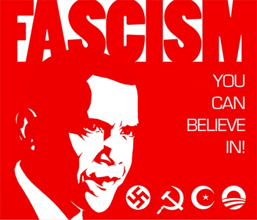 Obama Fascism You Can Believe In Poster