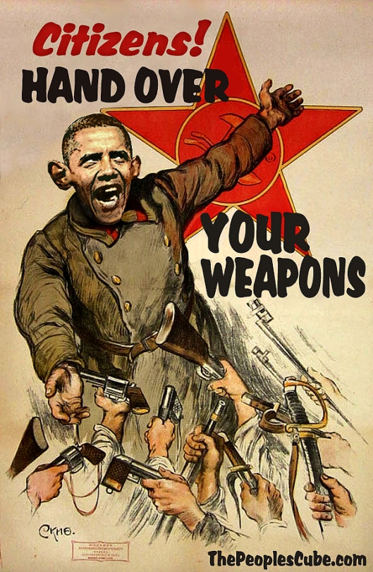 Obama Gun Confiscation Poster