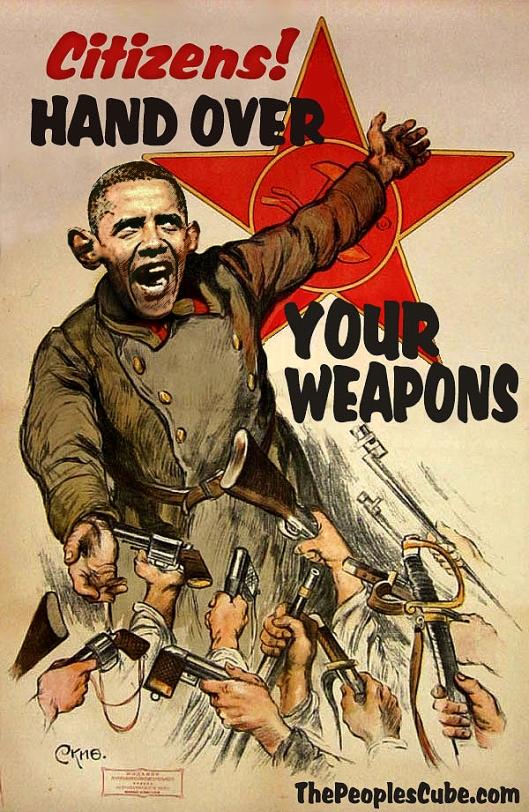 Obama Gun Confiscation Poster