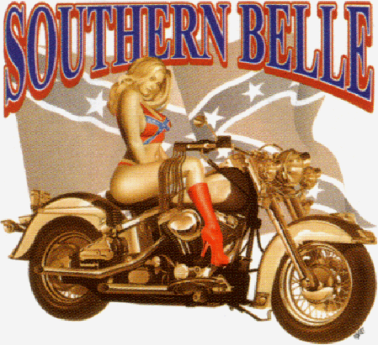 Southern Belle Confederate Flag Bikini Motorcycl Girl